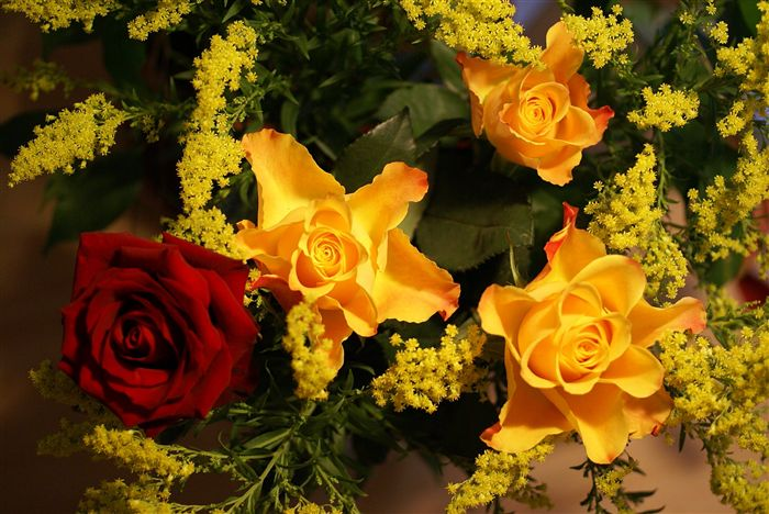 photo yellow rose and red rose bouquet