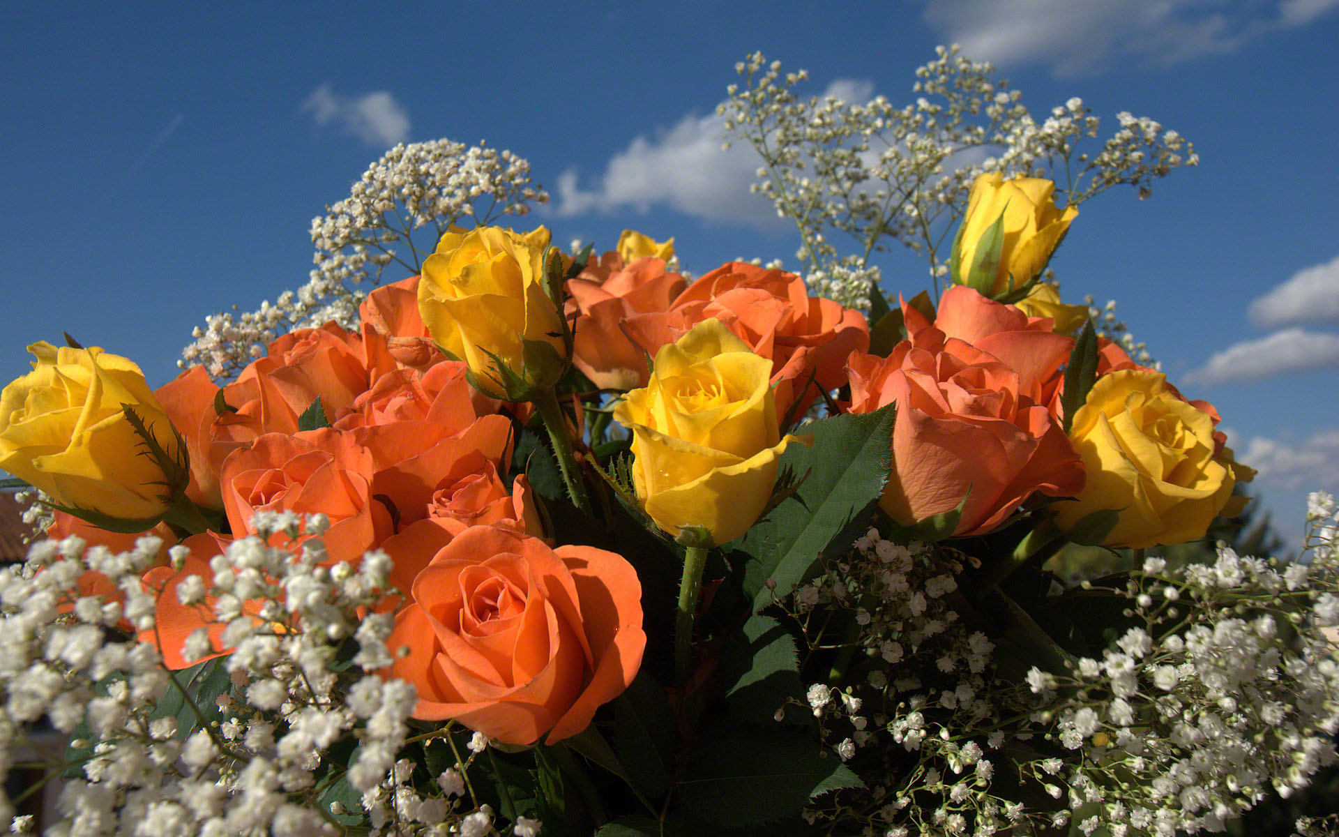 Yellow and orange roses bouquet