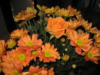 Fondo de pantalla rosas anaranjados Bouquet