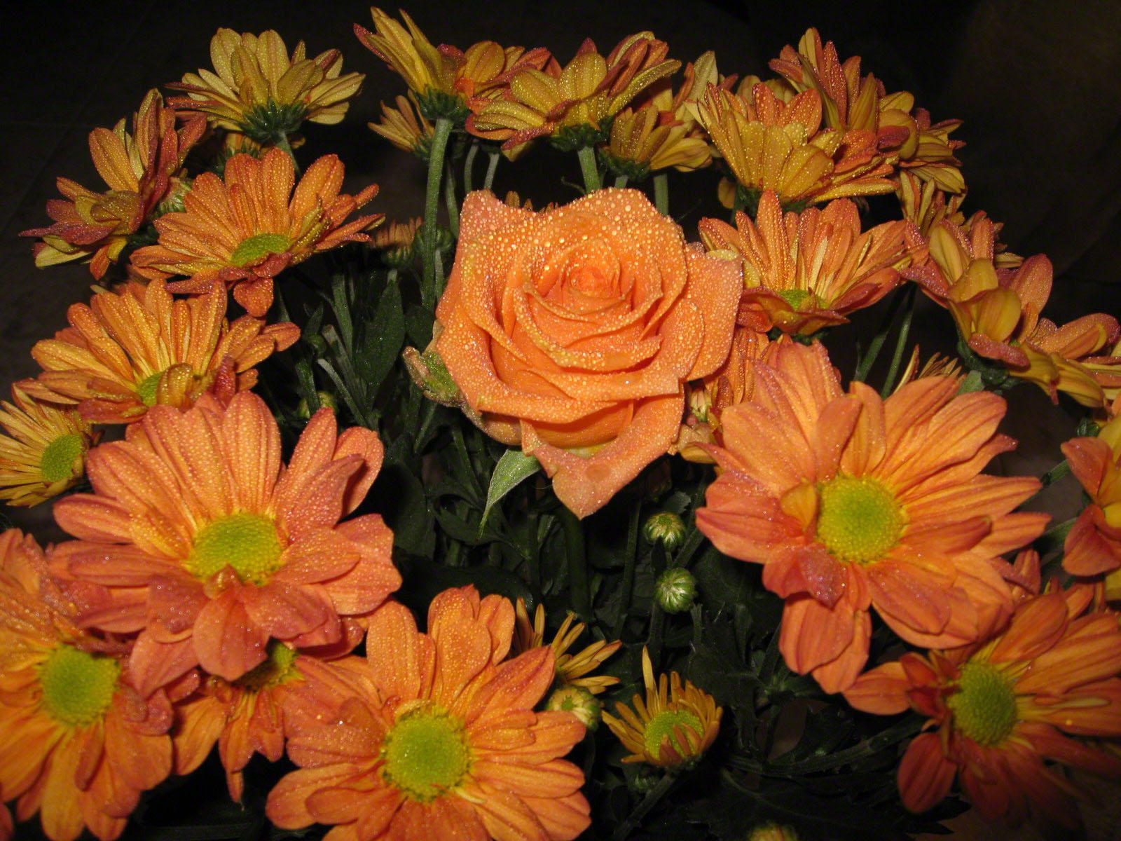 http://www.fabiovisentin.com/photography/photo/12/roses-wallpaper-roses-bouquets4387.JPG