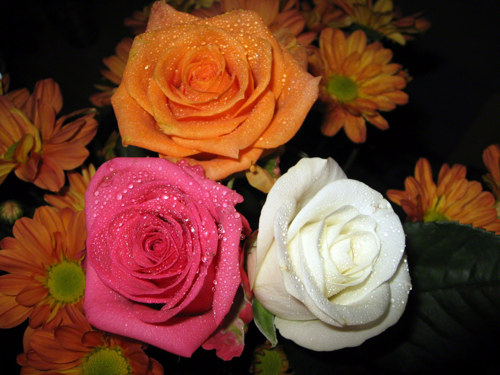 http://www.fabiovisentin.com/photography/photo/12/roses-wallpaper-roses-bouquets4483.JPG
