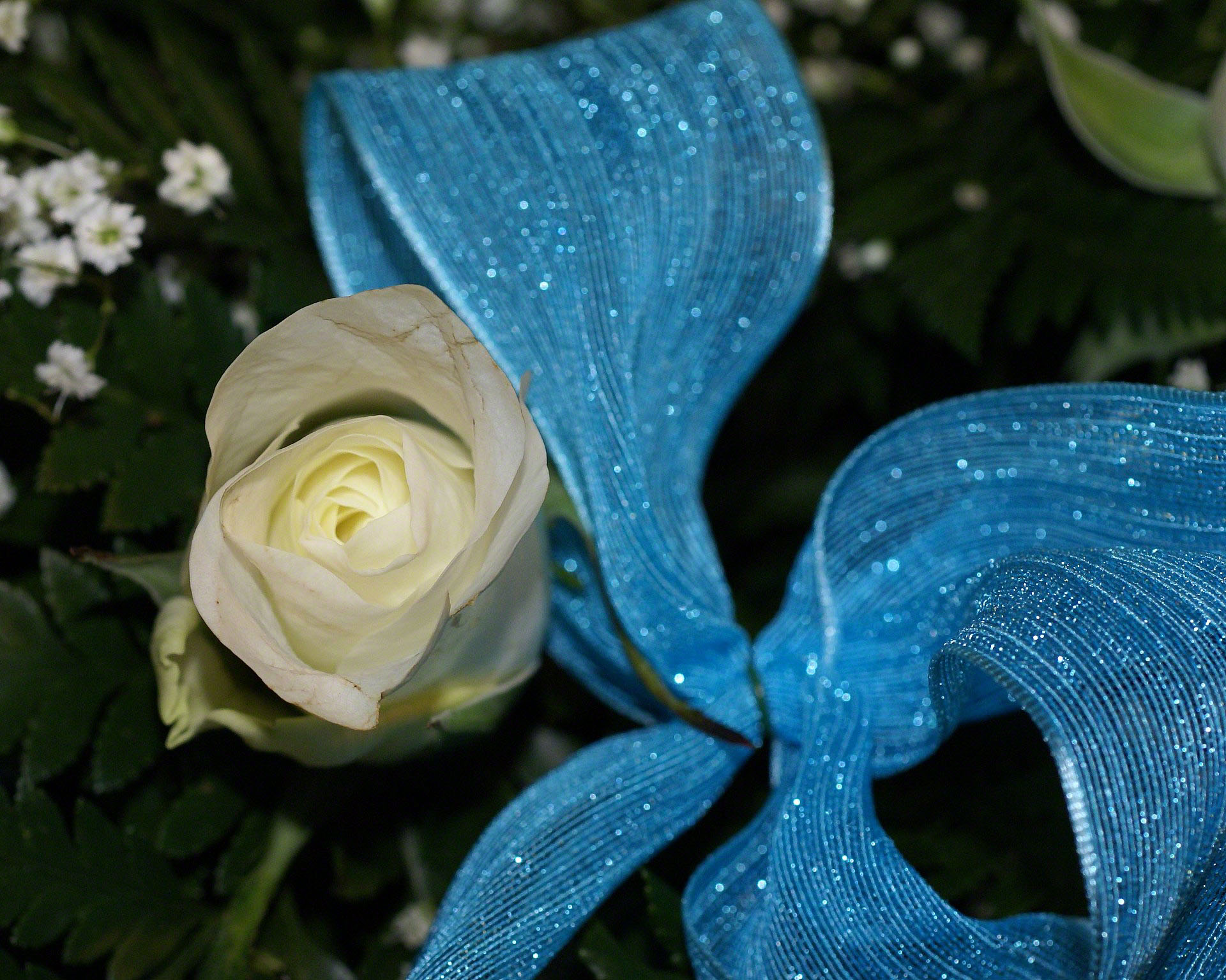 http://www.fabiovisentin.com/photography/photo/12/white-rose-bouquet-0265310.jpg