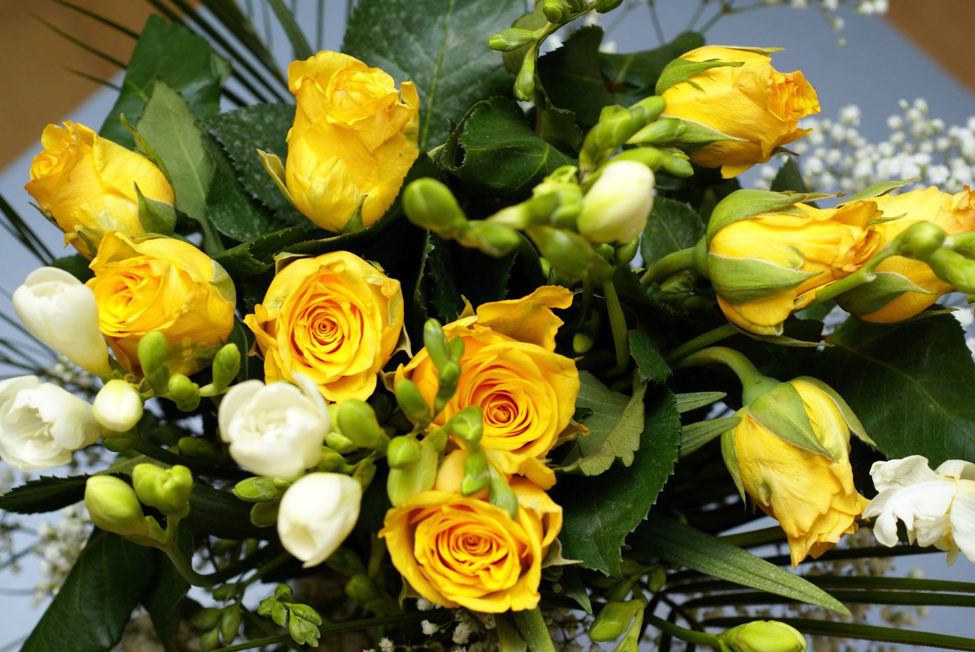 http://www.fabiovisentin.com/photography/photo/12/yellow-roses-bouquet-00842.jpg