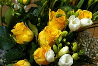 Yellow rose bouquet with freesia