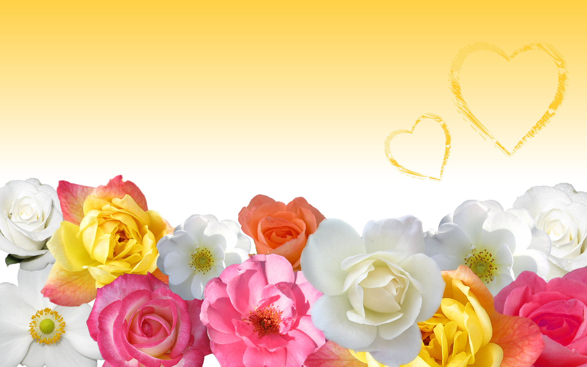 Love Flower Wallpaper Images : Flower Love Wallpaper in Yellow