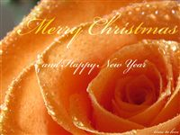 Mery Christmas and happy new year Ecard