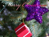 Christmas Ecard true Christmas tree