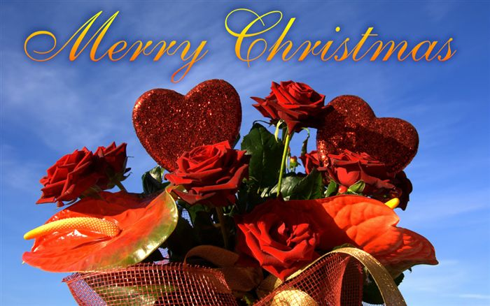 Merry Christmas rose ecard