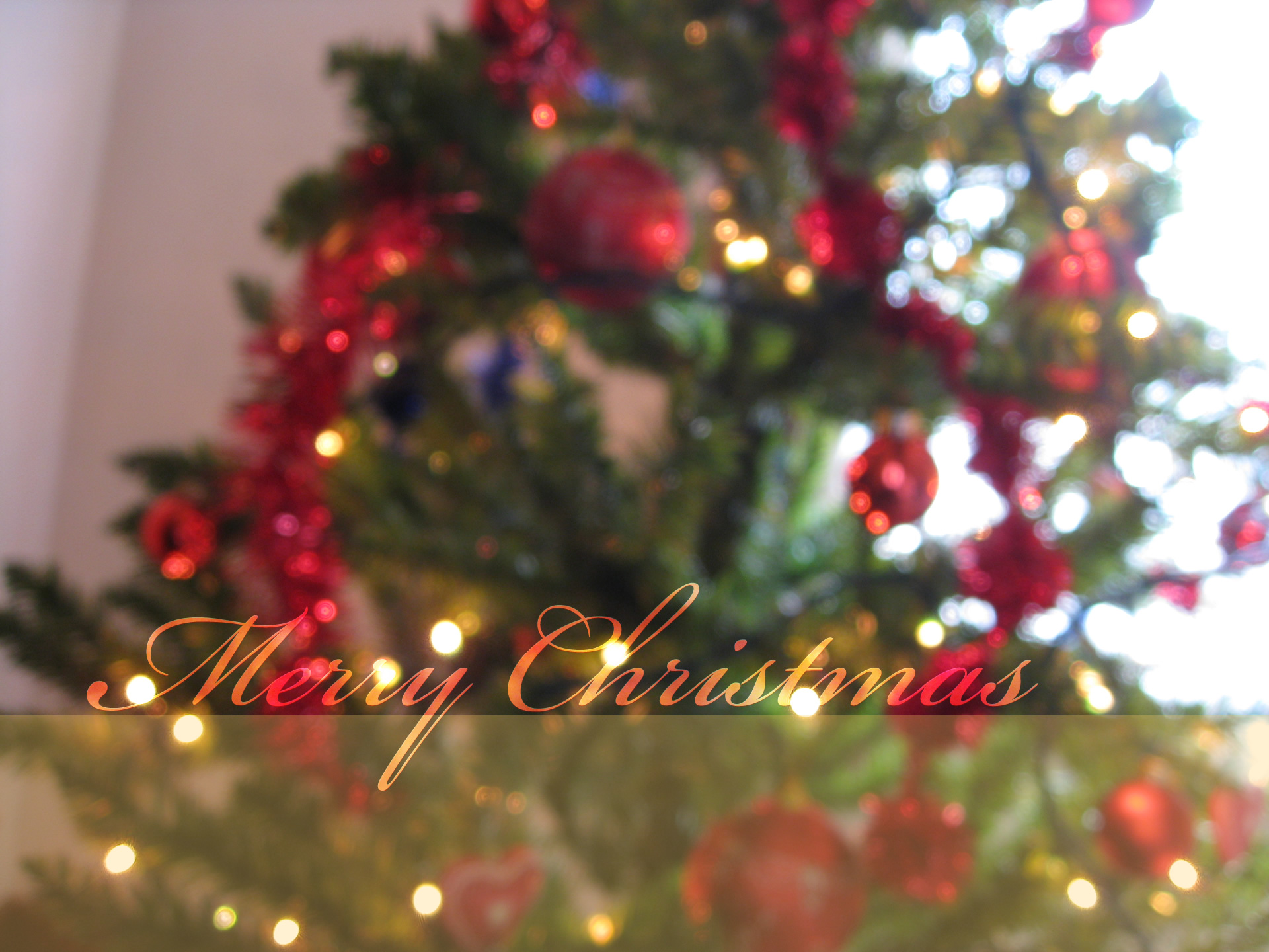 merry christmas tree wallpaper