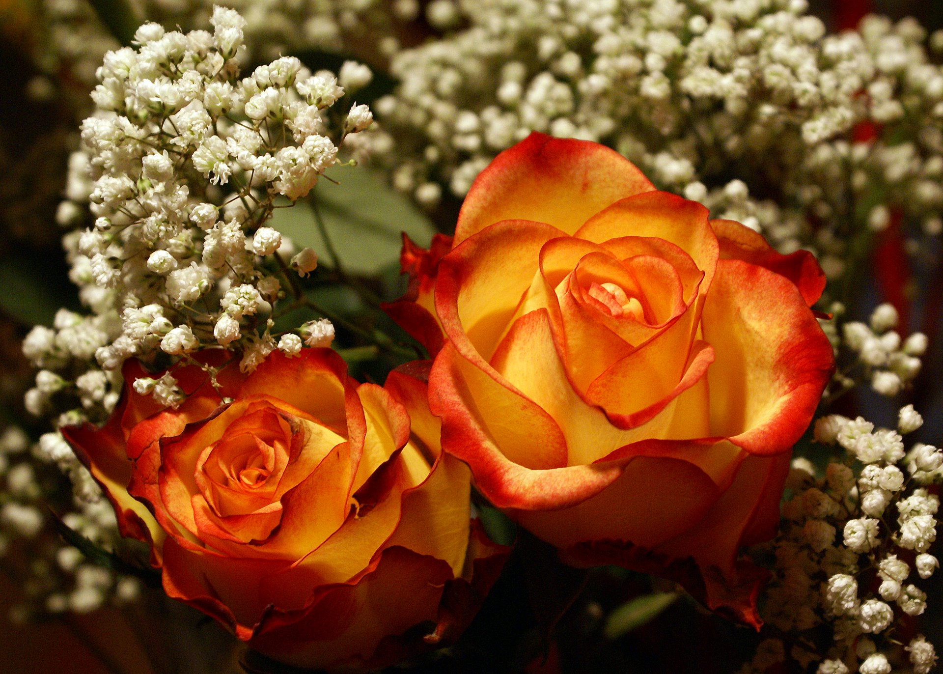 http://www.fabiovisentin.com/photography/photo/17/most-beautiful-red-yellow-rose-bouquet.jpg