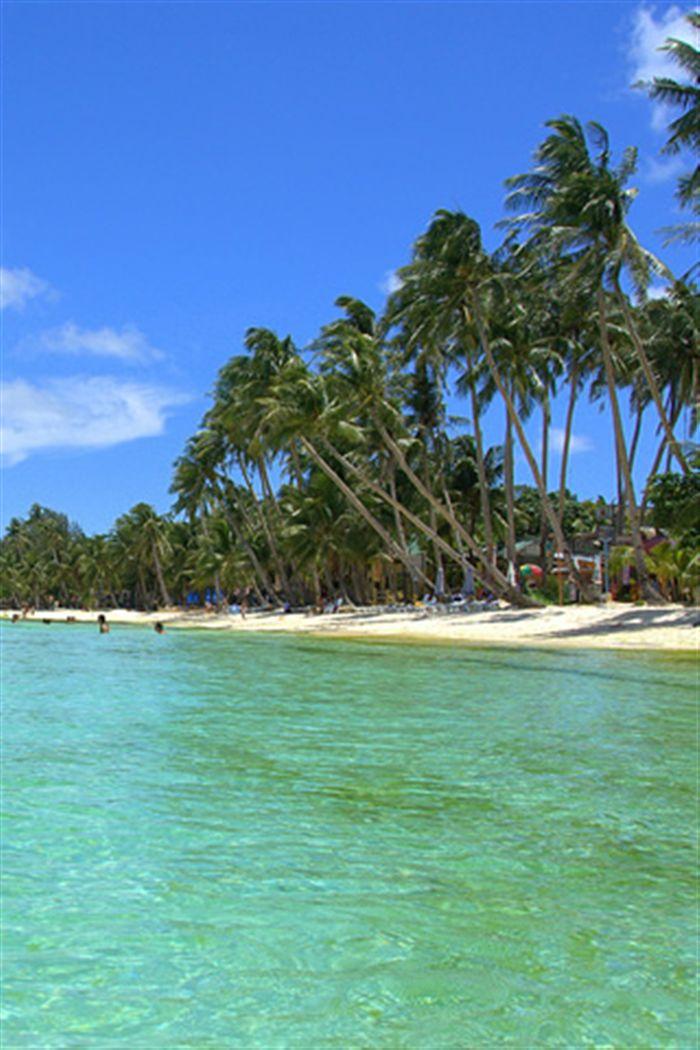 Iphone Wallpaper Apple 320x480 Pixel Tropical Beach