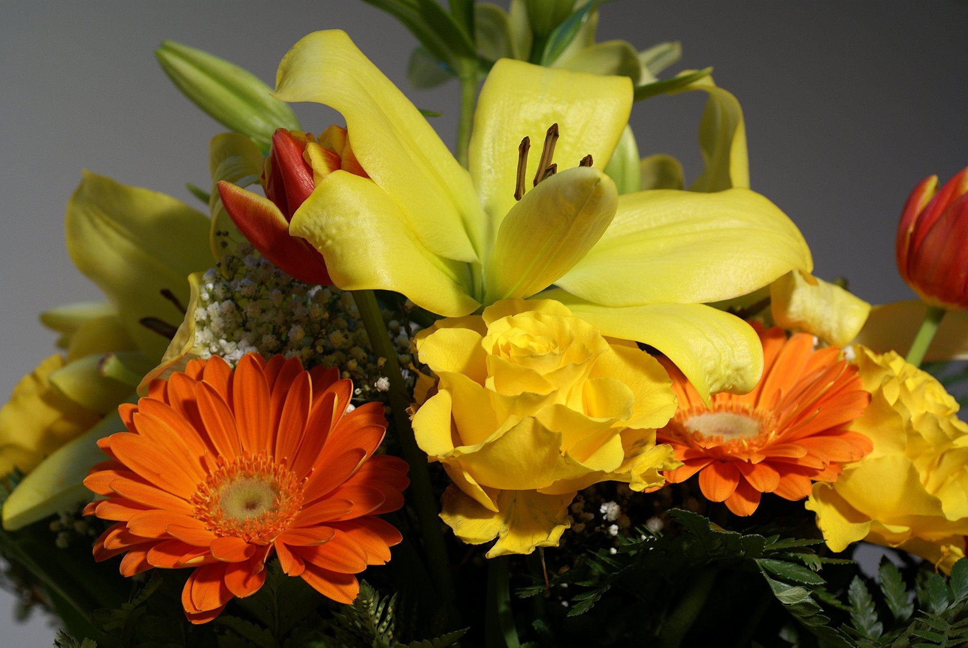 Bouquet de fleures photos