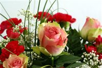 Roses bouqet with red carnations
