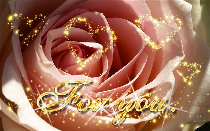 صاحب السمو الملكي الامير خليفة بن سلمان آل خليفة يحفظه الله  Foryou-valentine-wallpaper-sparkling-light_high