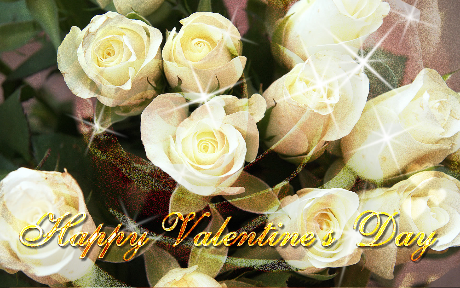 valentine's day white roses, Ideas