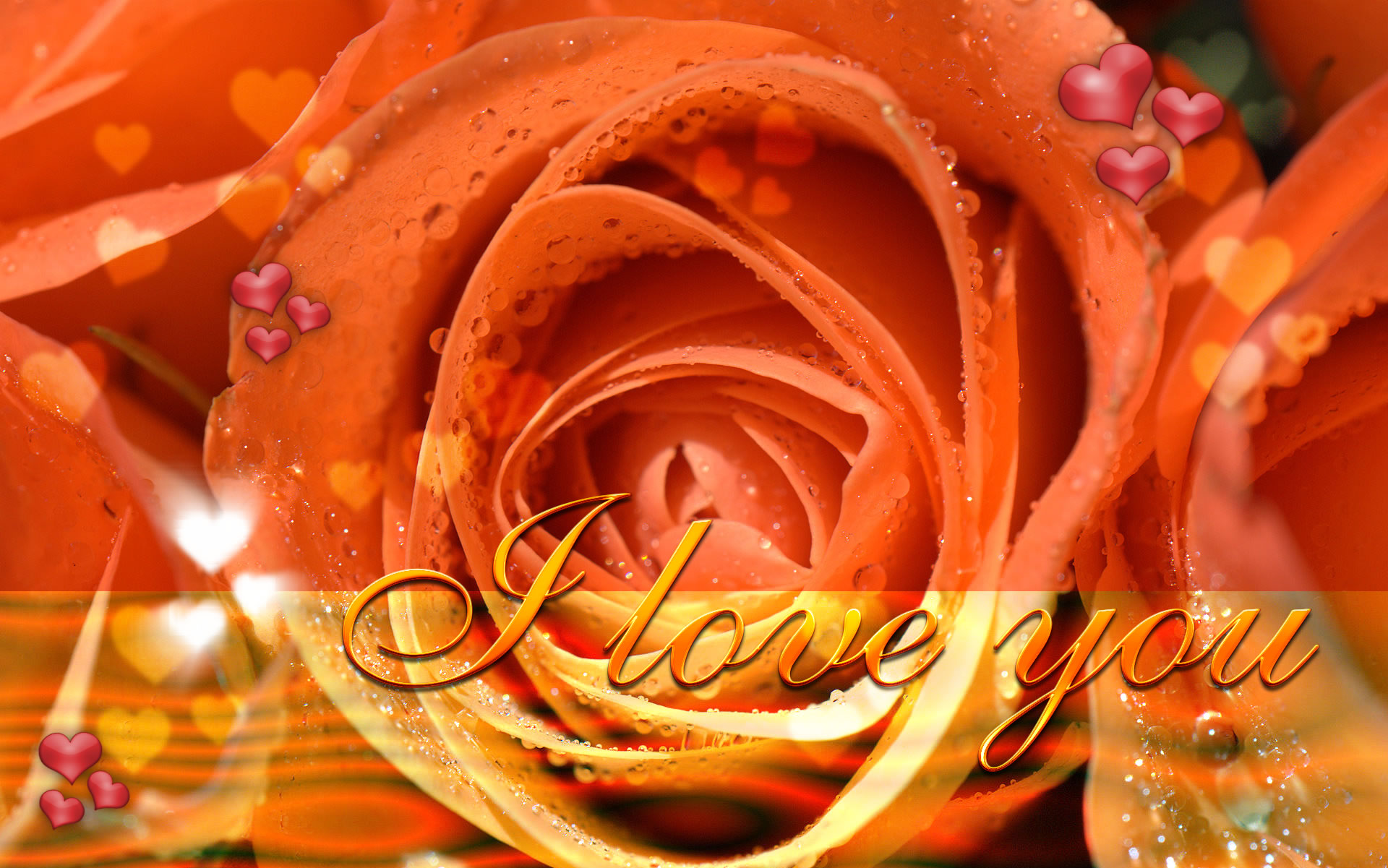"orange roses love you wallpaper, ""love you"" wallpaper 16:10 1920x1200 format"