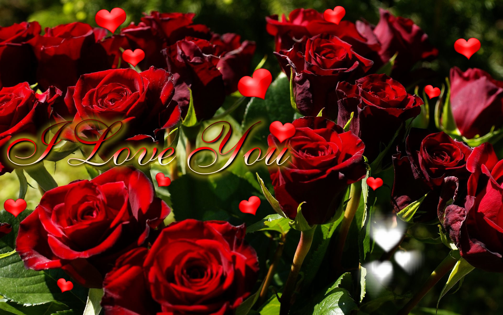 i love you ecard hearts of roses