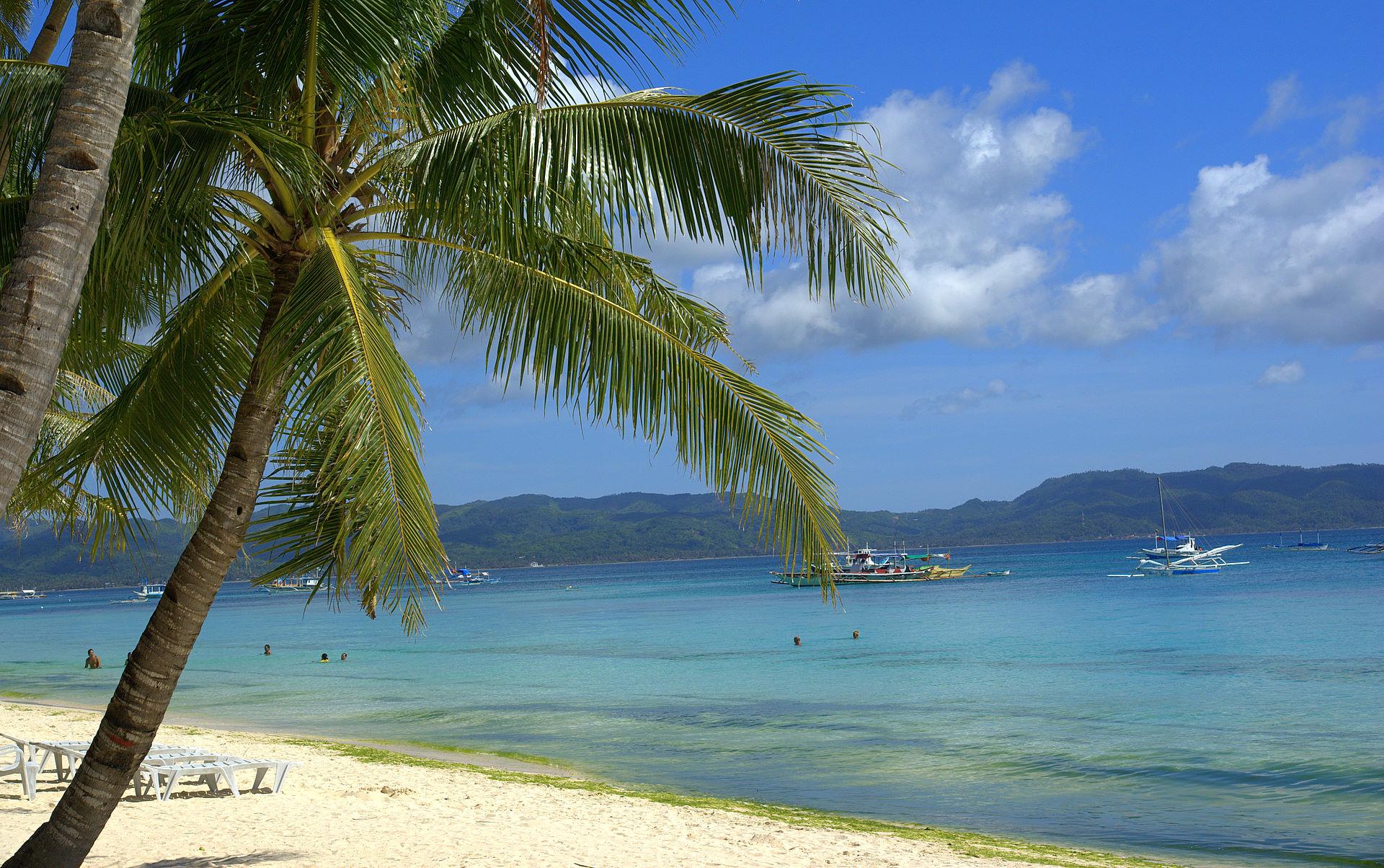 Tropical Beach Girls