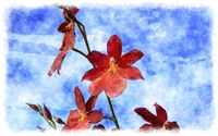 watercolor cambria orchid