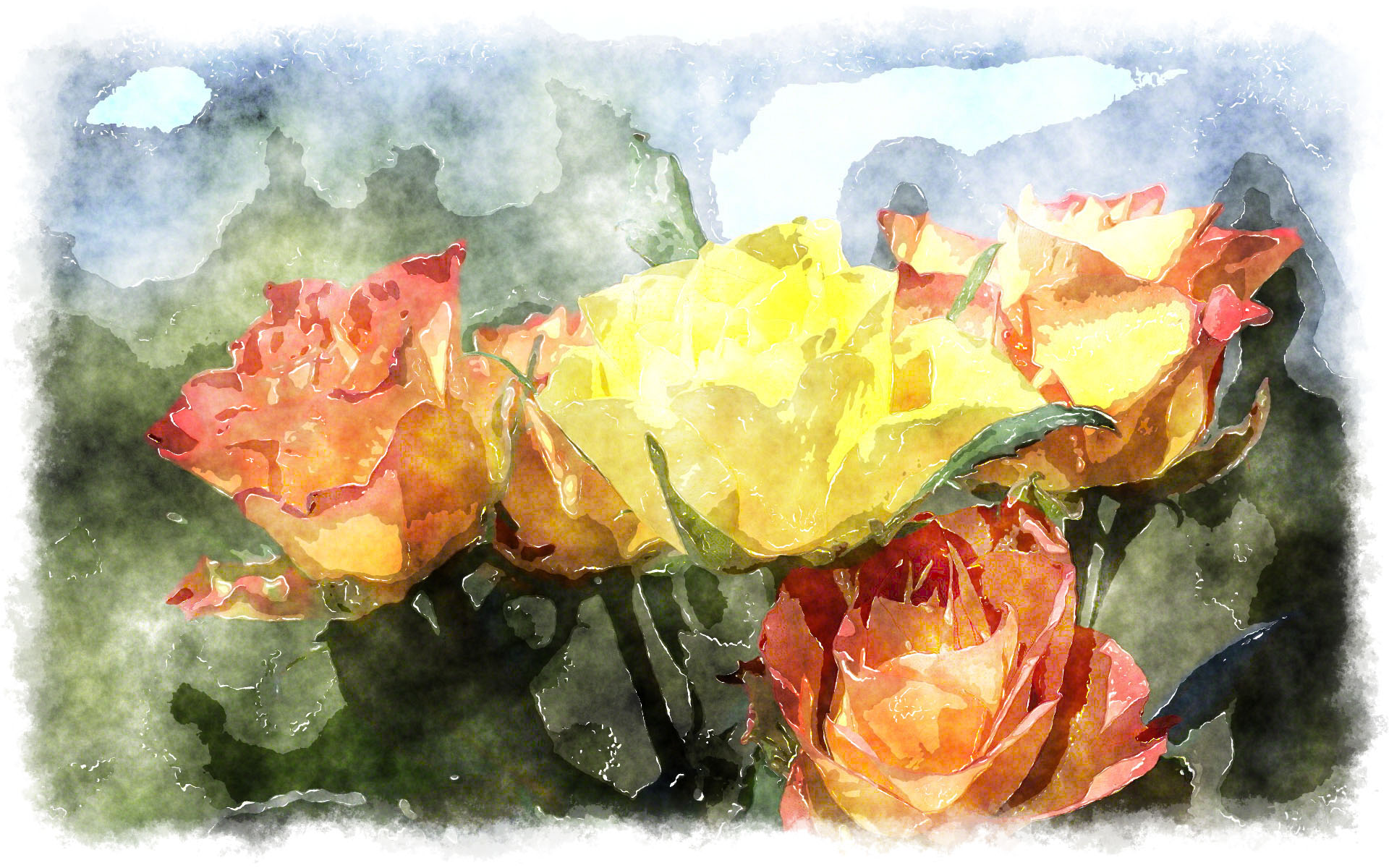 Roses watercolor for How to paint a rose in watercolour
