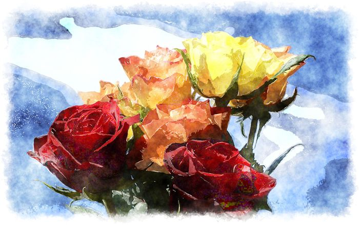 photo watercolor roses
